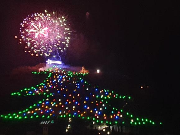 inaugurazione albero 2019